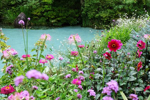 植物と生命力の癒やしがテーマの庭│ラ・カスタ ナチュラル ヒーリング ガーデン