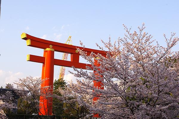 平安神宮入口の大鳥居は登録有形文化財に指定されている
