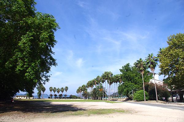 宿泊施設・休暇村の目の前に、うさぎが集まる芝生広場がある