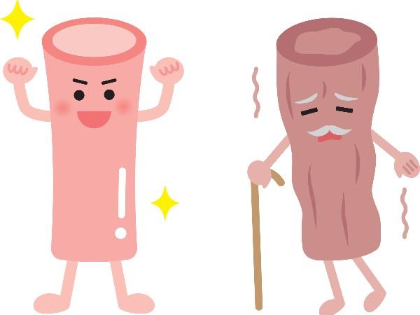 ゴースト血管って何?
