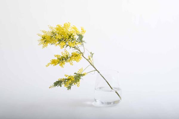 1本目は下の部分にも花や葉が付いているものを使う
