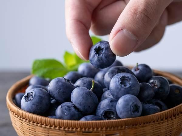 ブルーベリーの栄養効果とは