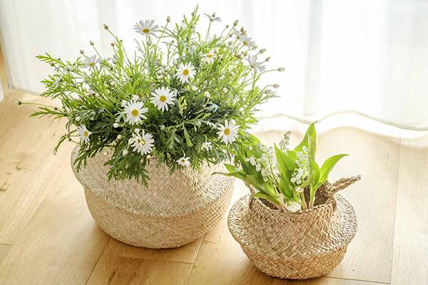 バスケっトを使って花を飾る