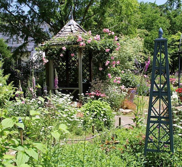 花に囲まれたガゼボには、スパニッシュビューティーが屋根まで延びて……来園者のフォトスポットになっています。