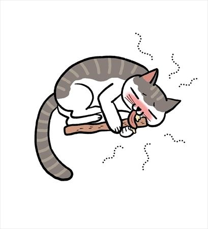 猫がまたたびが好きな理由