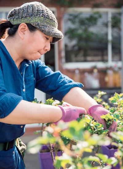 仁子さんは8時半ぐらいに来て、まずビニールハウスで育てている販売用の苗木などの世話をしてから庭の手入れへ。