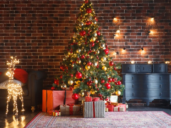 クリスマスツリーはいつから飾る?