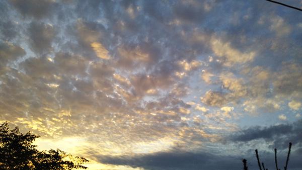 秋の空(鱗雲)