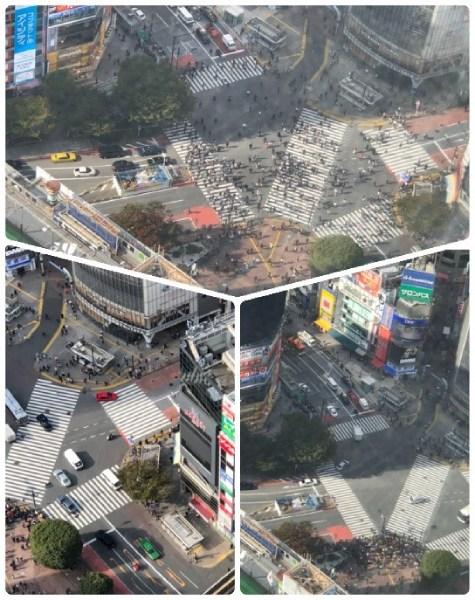 渋谷スクランブルスクエアの展望台