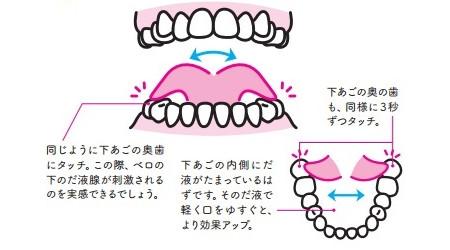 殺菌ベロ回しのやり方:下あご一番奥の左右の歯に触る