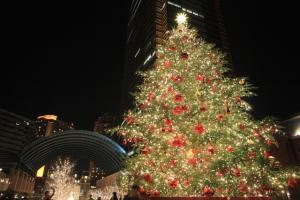 クリスマスが終わったら、ツリーはどうなるの?