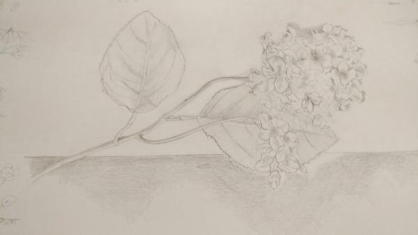 アジサイの造花
