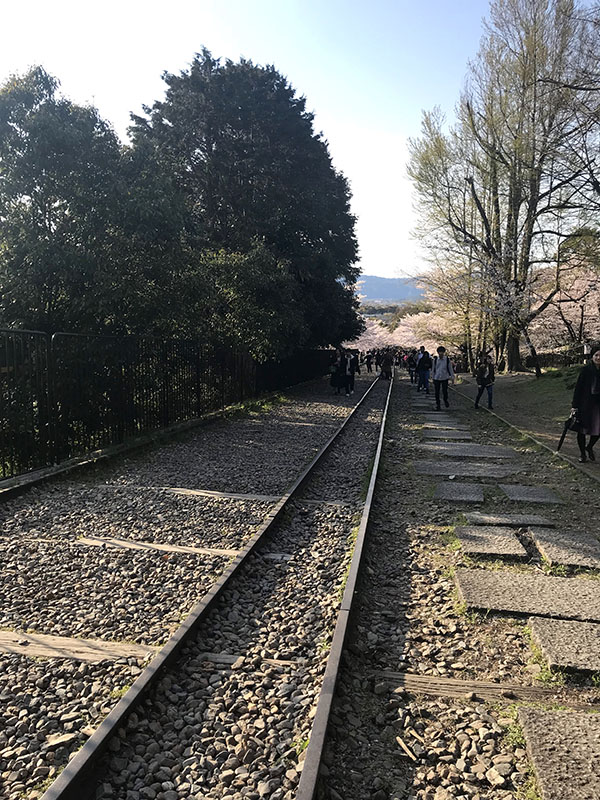 蹴上インクラインの線路跡。昭和23年11月に運転休止となった
