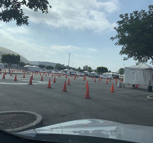 巨大な駐車場が会場。30分ごとに入れ替えで、約10列、各列10台くらいが並びます