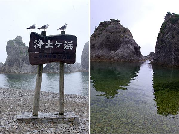 (左)行儀よく並ぶウミネコ(右)入り江の内側は浅瀬が続く
