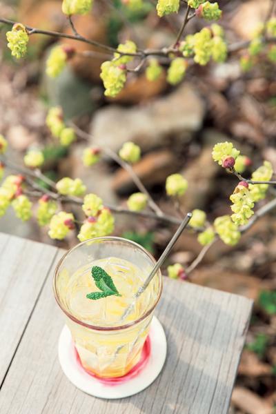 カフェでは国産の無農薬レモンを使った自家製のレモンスカッシュがおすすめ。