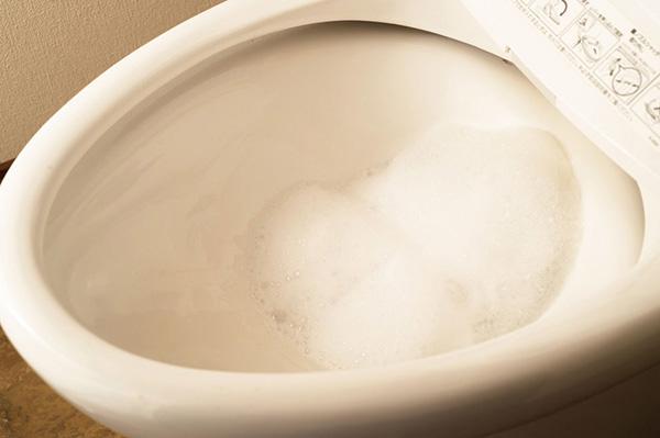 オキシ漬けしたトイレ