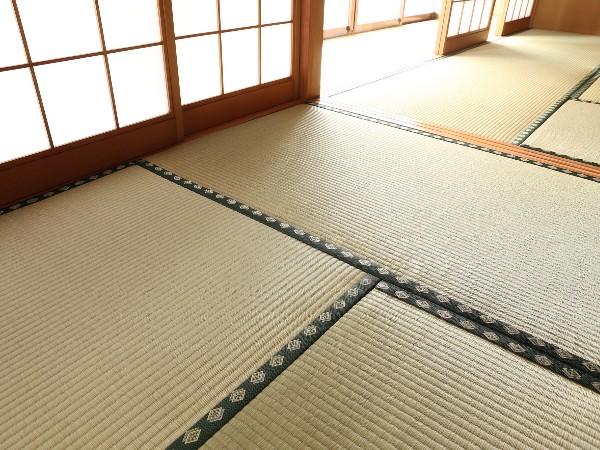 地域によって畳の大きさが違うって本当?