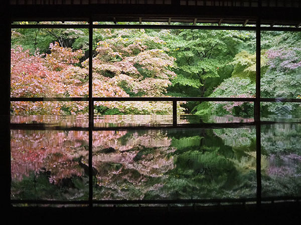 京都八瀬の瑠璃光院