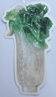 旅先から自分宛に送った記念の翠玉白菜型はがき