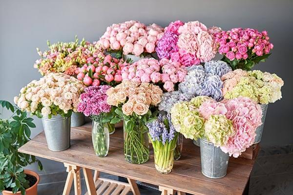 長持ちする花を購入するには?状態と種類を解説