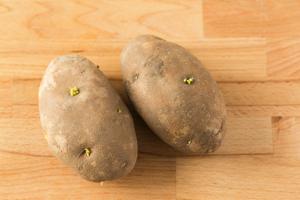 なぜ芽が出たジャガイモを食べてはいけないの?