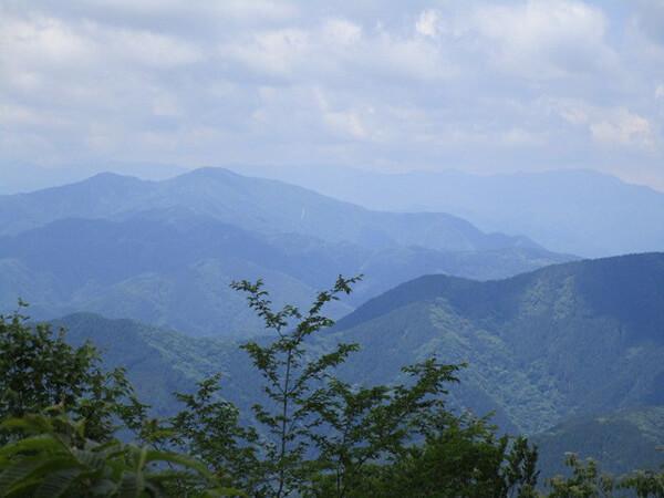 福成神社の裏山を歩いてきました