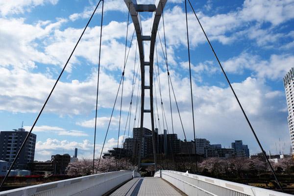 東品川海上公園と天王洲公園を結ぶのがアイル橋