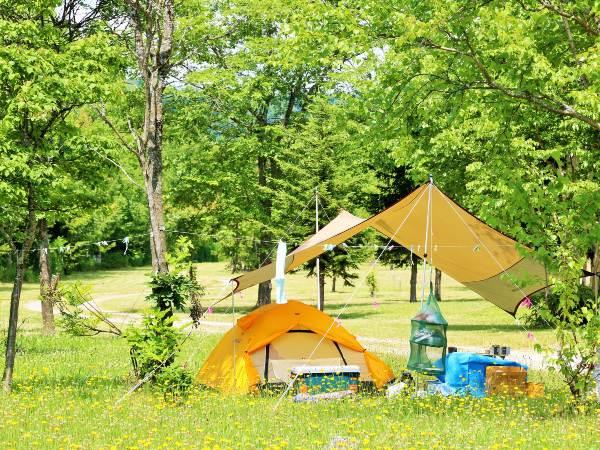 夏のキャンプで涼しく過ごす方法は?