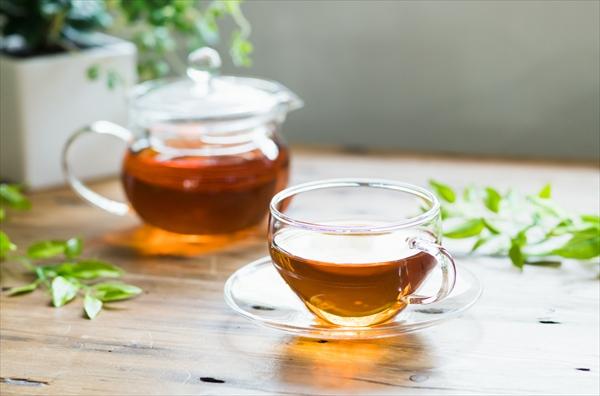緑茶と紅茶の違い