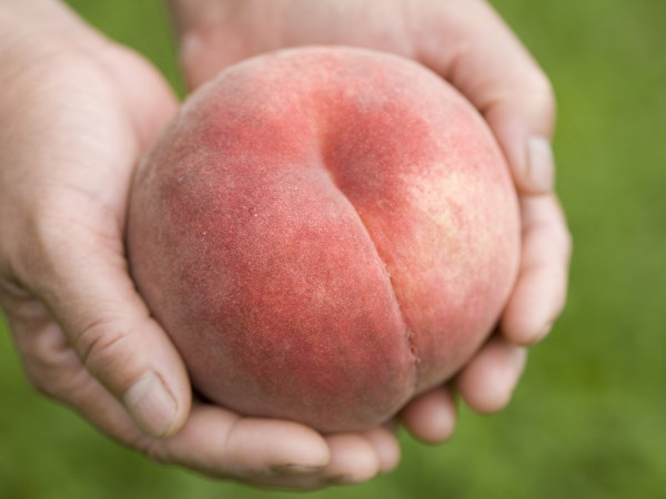 おいしい桃の選び方は?