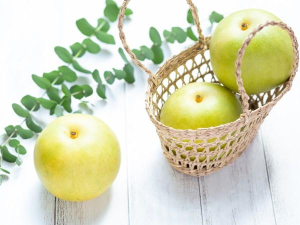 主な梨の種類は?
