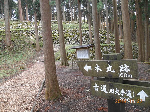 杉の木立の中に見える石積みと案内板