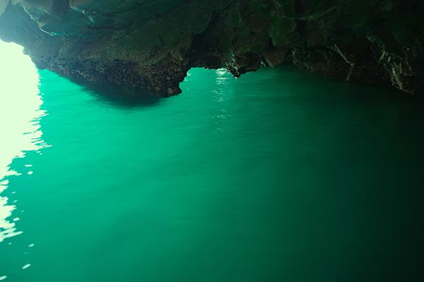 洞窟に入って、入り口付近の岩の下を見たところ