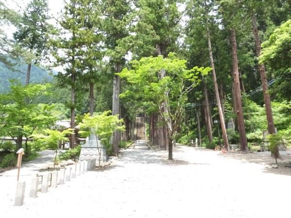 身延山久遠寺三門から見る参道