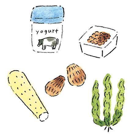 自律神経を整えるアイデア1:食物繊維と発酵食品をしっかりとる
