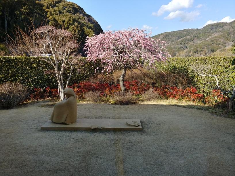 手入れの整った庭を眺めながらひと息
