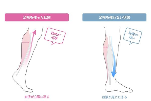 足の健康のためには小股歩きがおすすめ