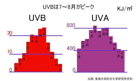 1年間の紫外線量
