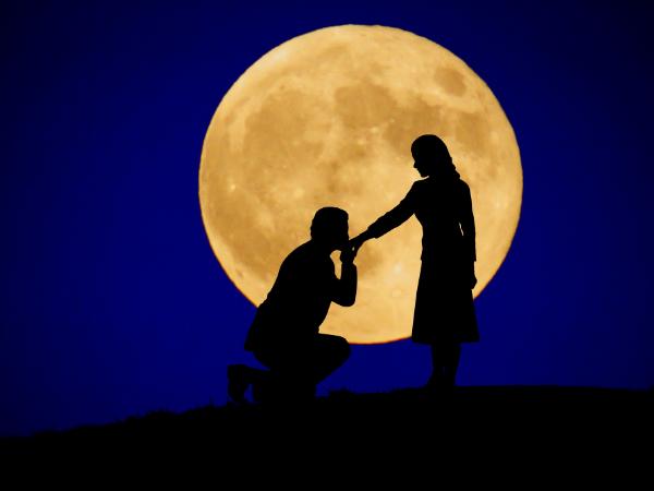 「月がきれいですね」は愛の告白って本当?