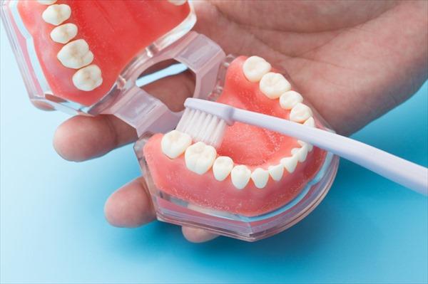 2.歯磨き指導を受けて毎日実践する