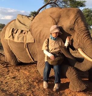 サファリの後お疲れ様と象に餌をあげました