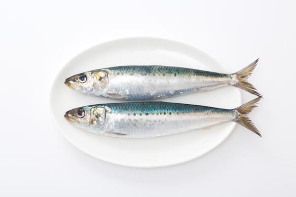 新鮮な魚は、ピンと反っている